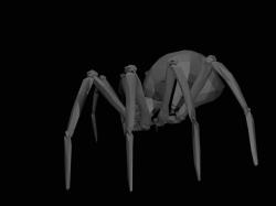 SpiderModelingReference_16